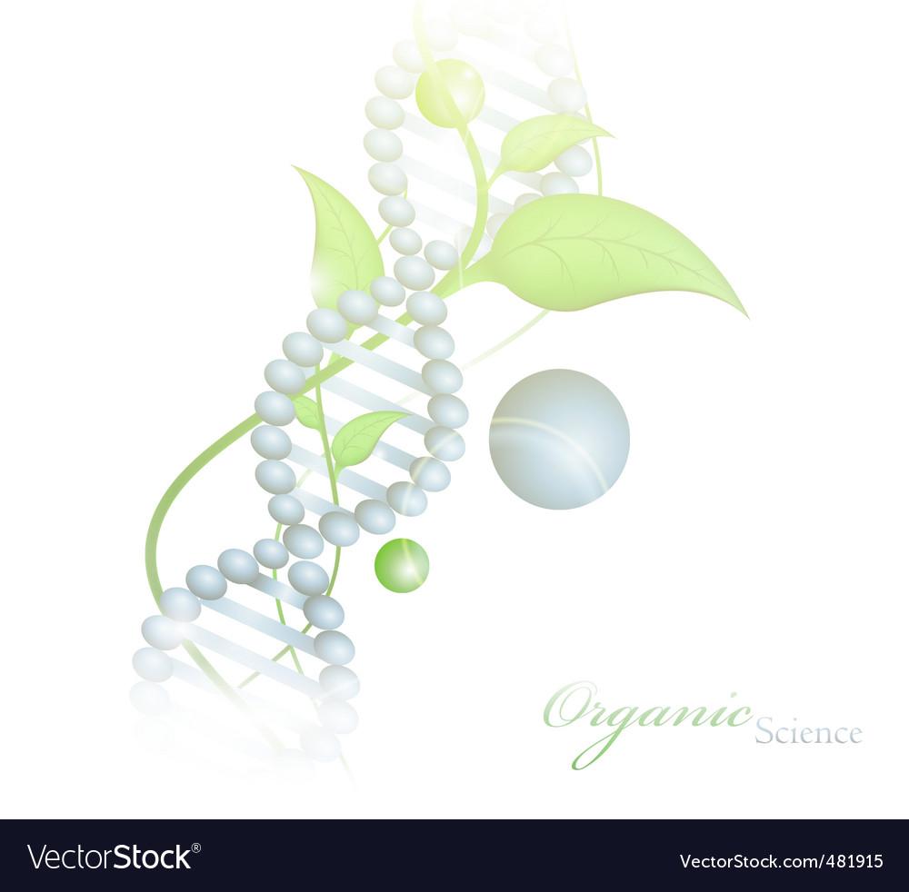 Organic science vector image