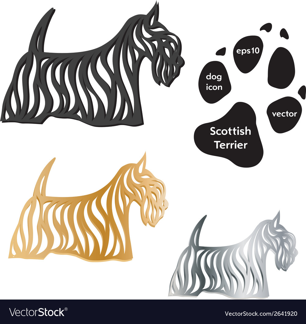 Scottish terrier dog icon on white background vector
