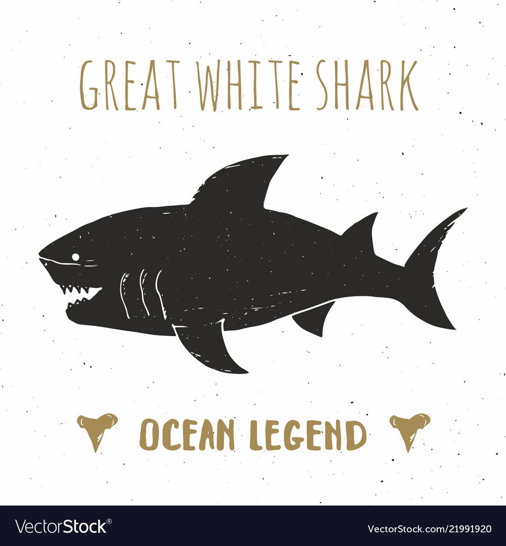 Shark silhouette vintage label hand drawn sketch