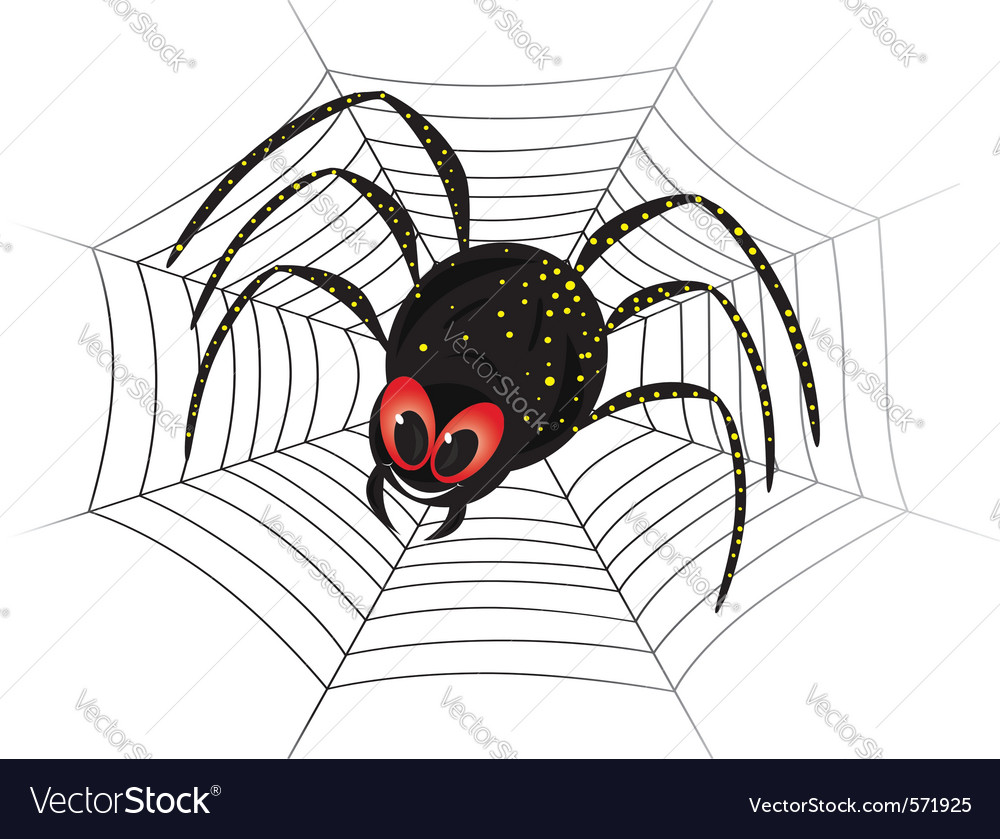 Black spider web