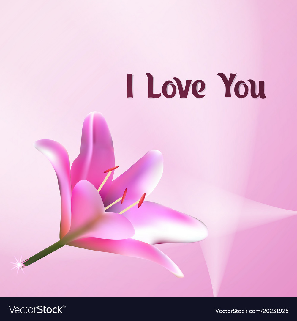 I Love You Greeting Card With Pink Lily Royalty Free Vector