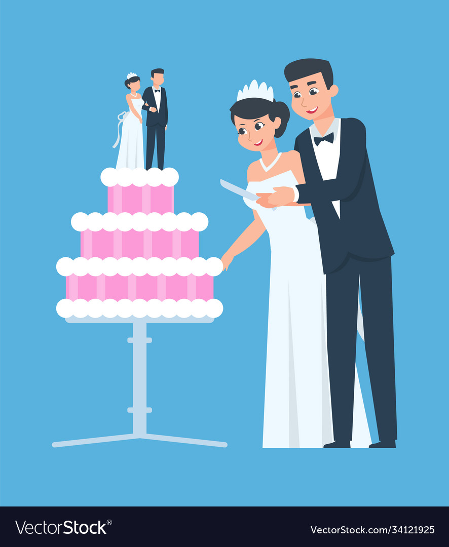 Wedding couple happy groom and bride with