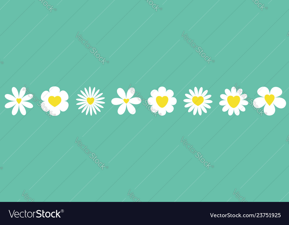 White daisy chamomile set line camomile icon cute