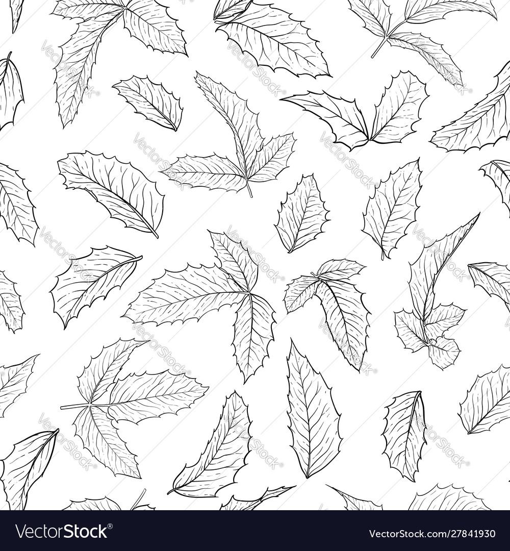 Black and white seamless pattern holly ilex