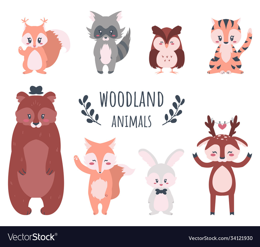 Cute forest animals cartoon woodland characters
