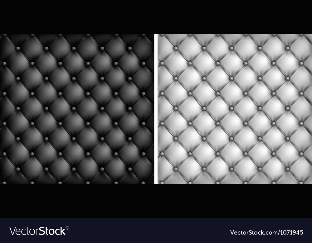 Leather Upholstery White Black Royalty Free Vector Image