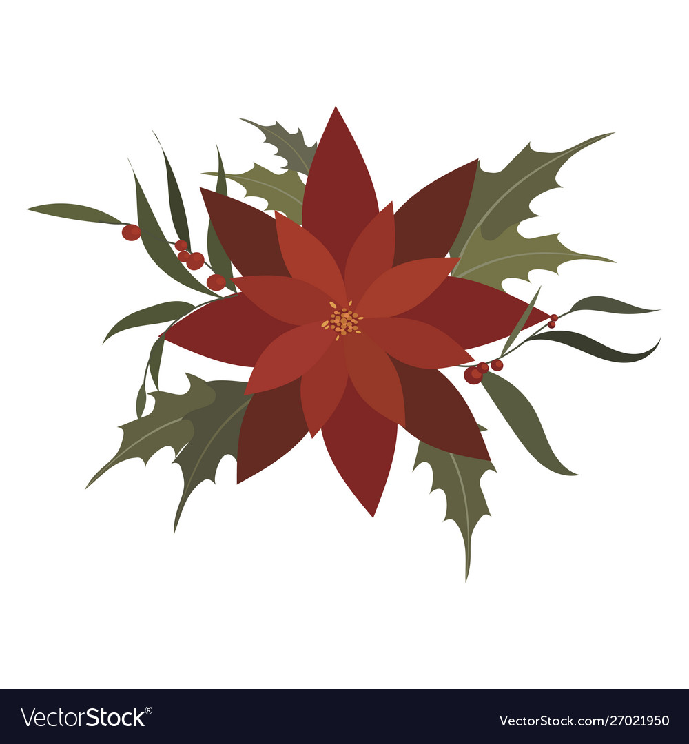 Flower poinsettia cartoon christmas flower vector