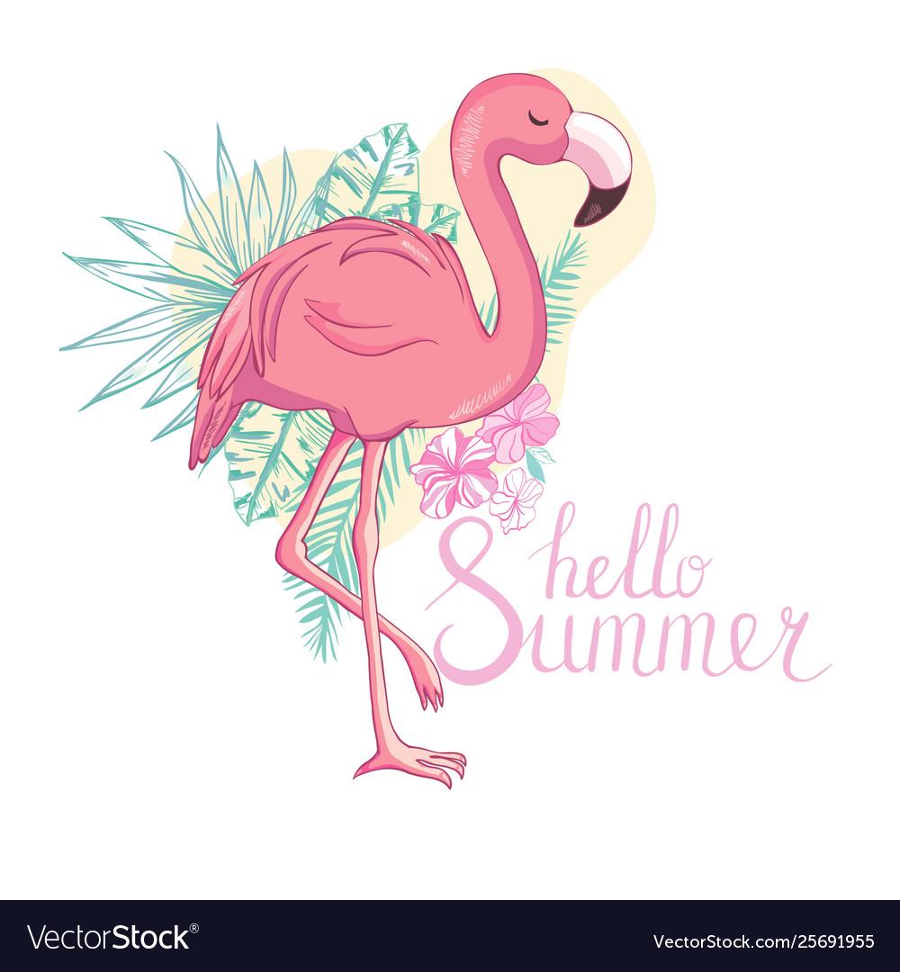 Flamingo bird design on background