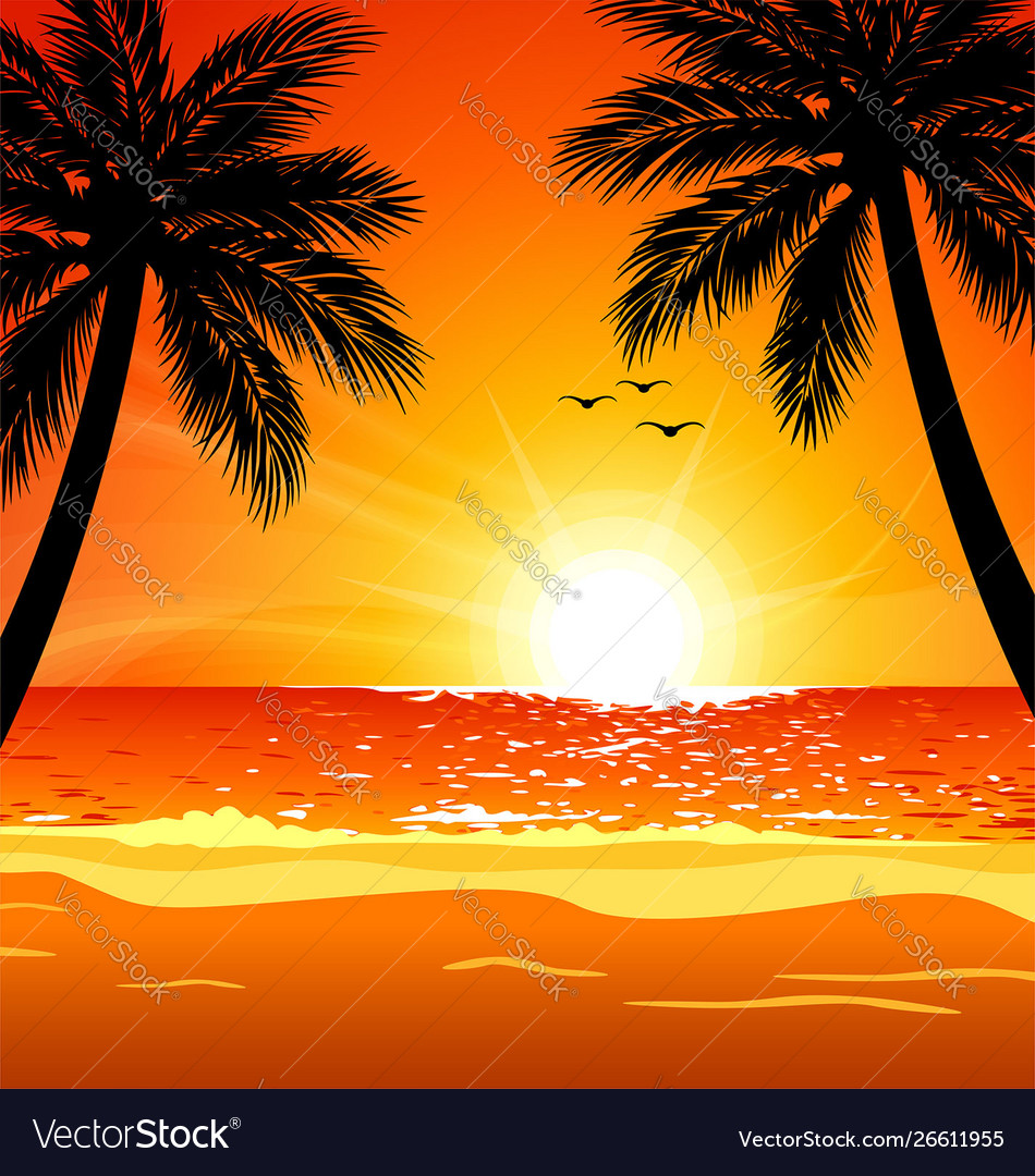 Warm Tropical Beach Sunset With Palm Trees Vector Image