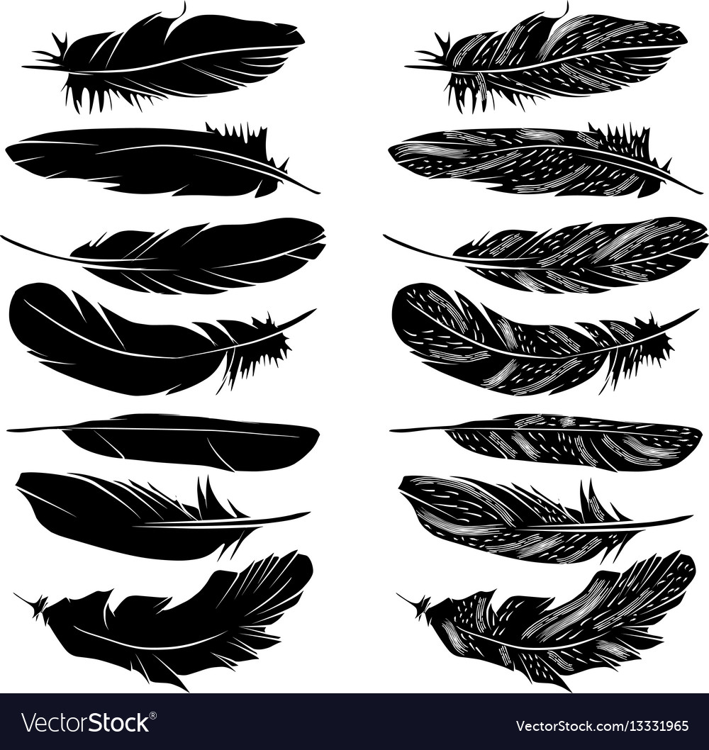 Feathers silhouette set