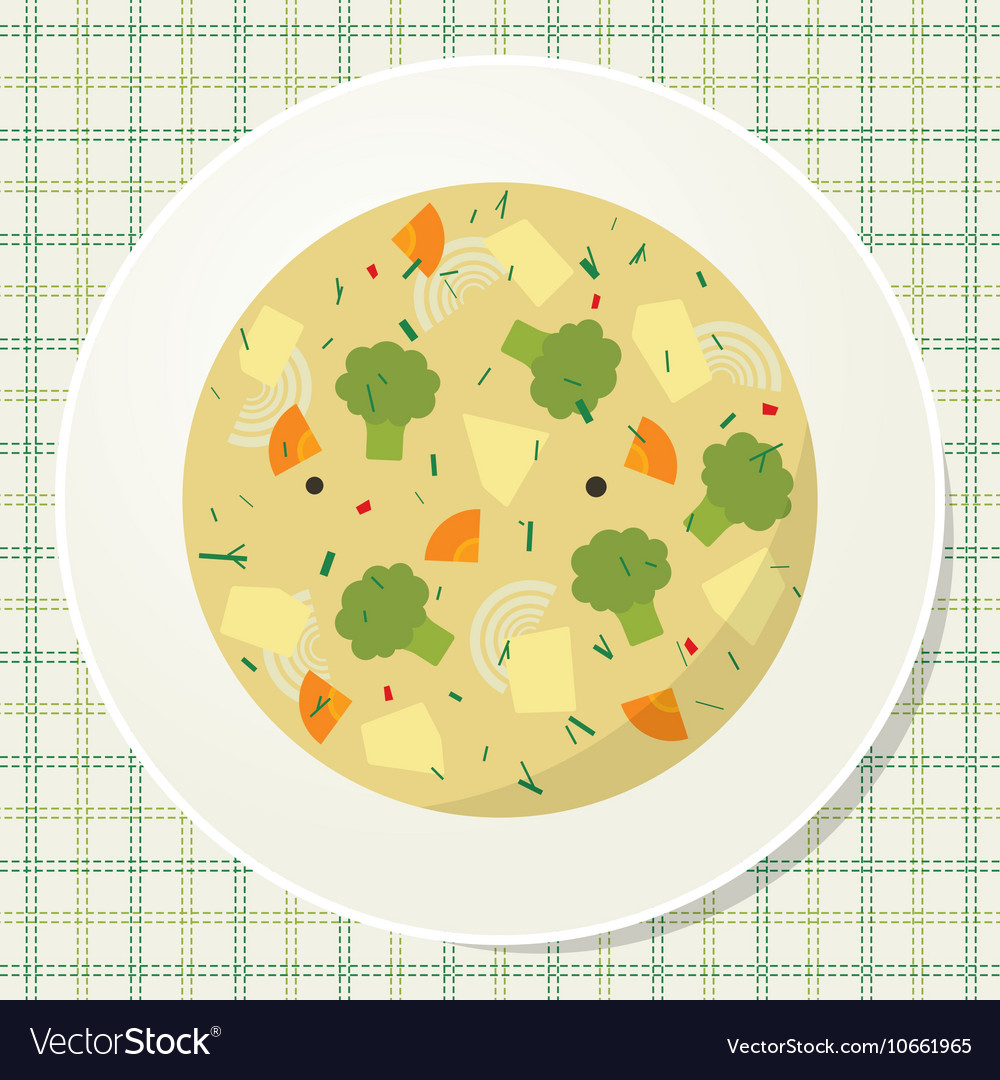 Plate of vegetarian broccoli soup on the table vector image