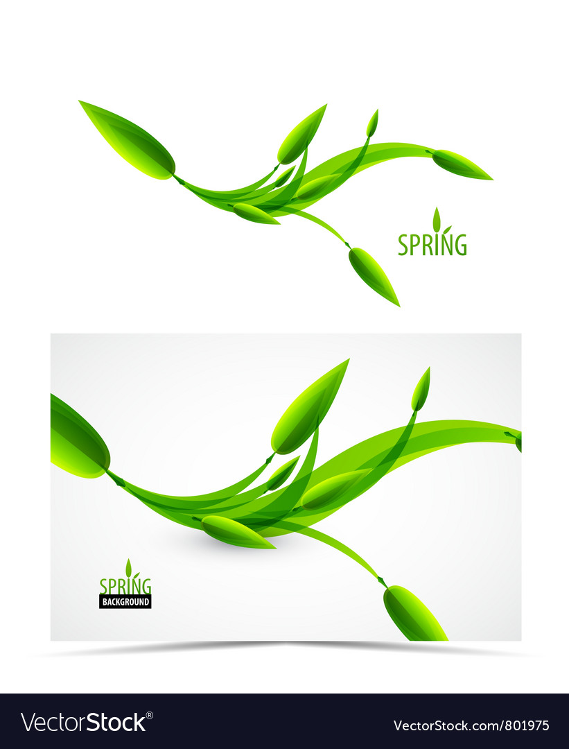 Abstract spring summer waves vector image