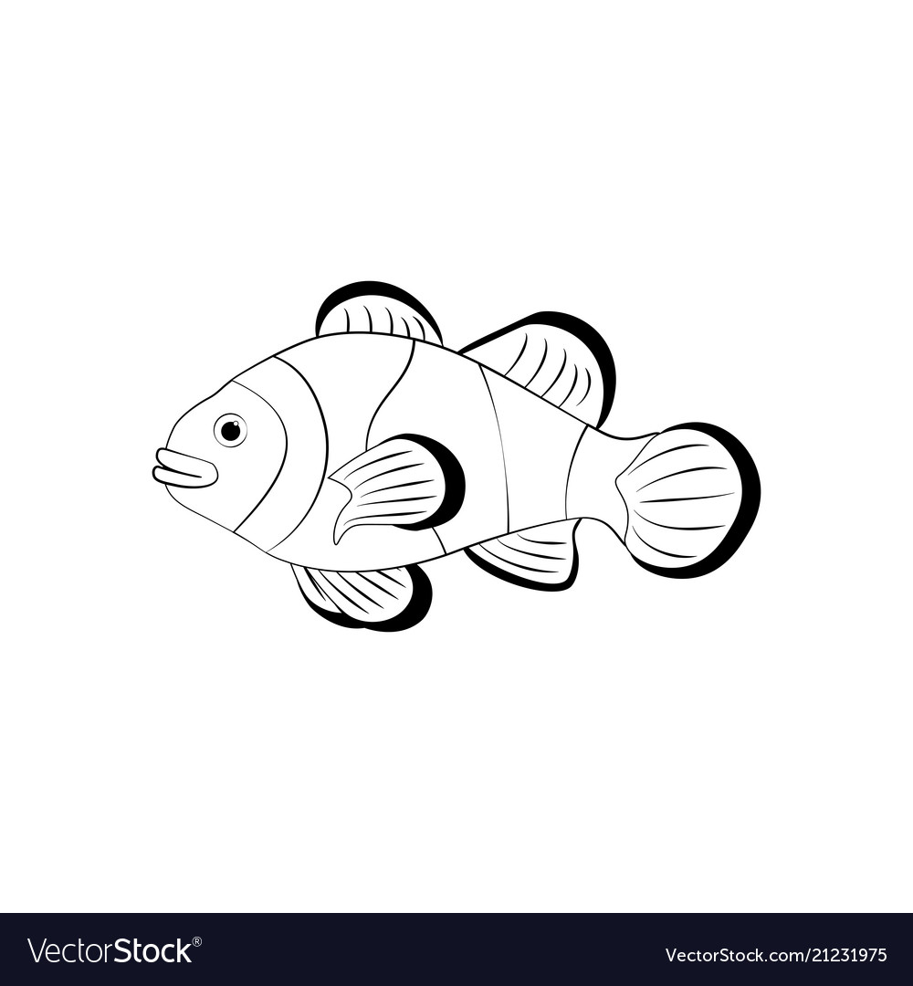 Clownfish Coloring Pages Royalty Free Vector Image