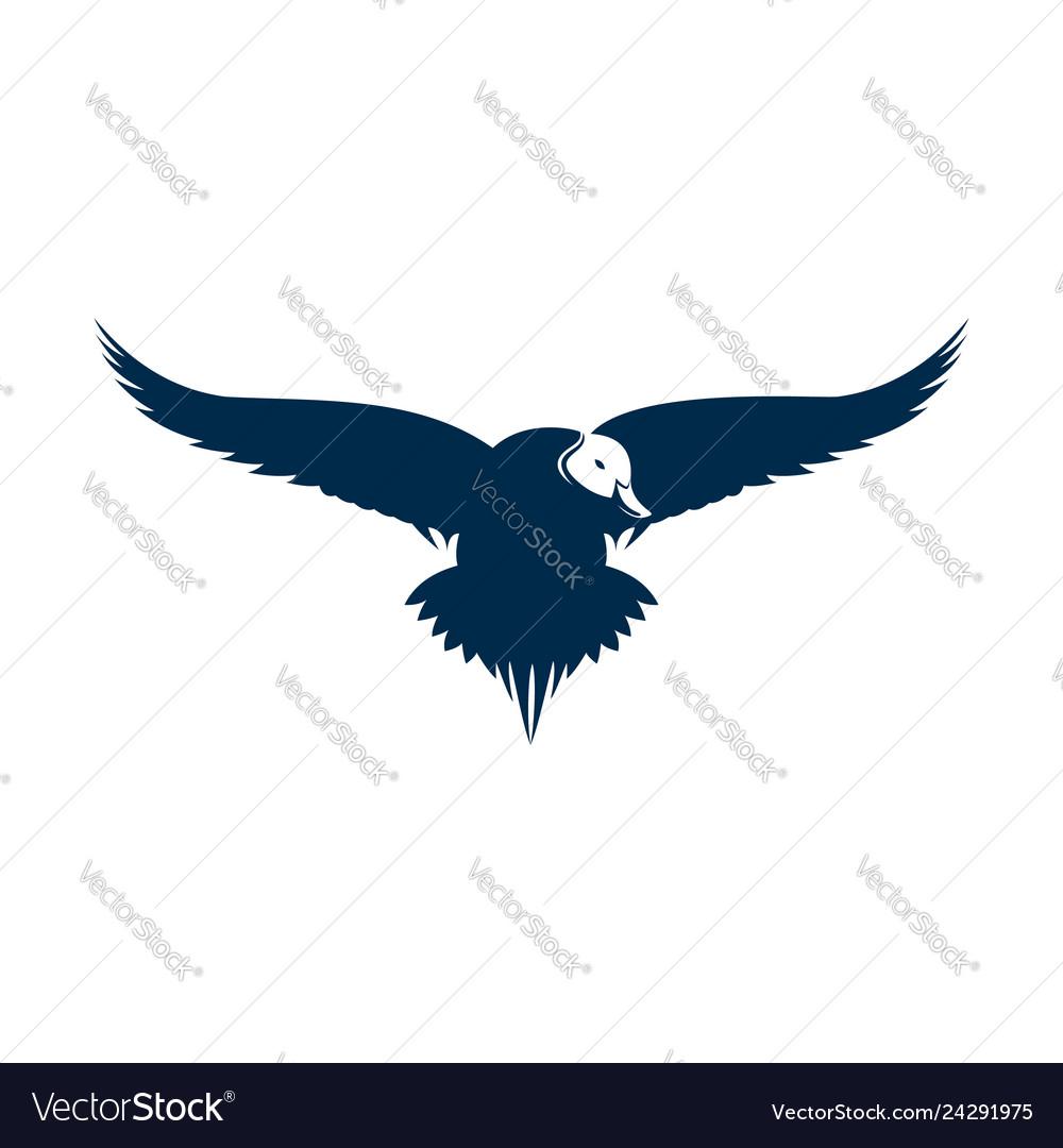 Duck pintail logo