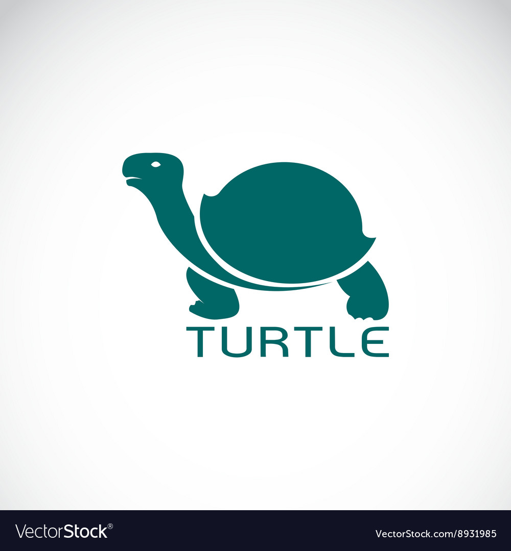 Image of an turtle design