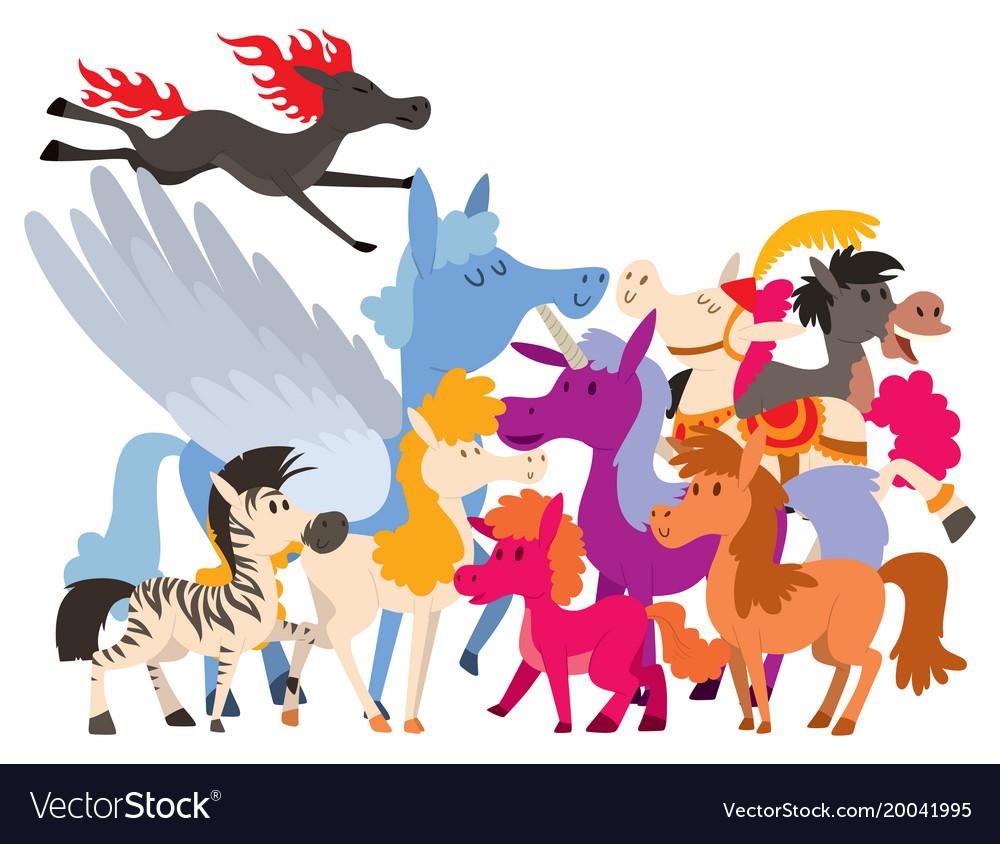Horse pony stallion breeds color farm