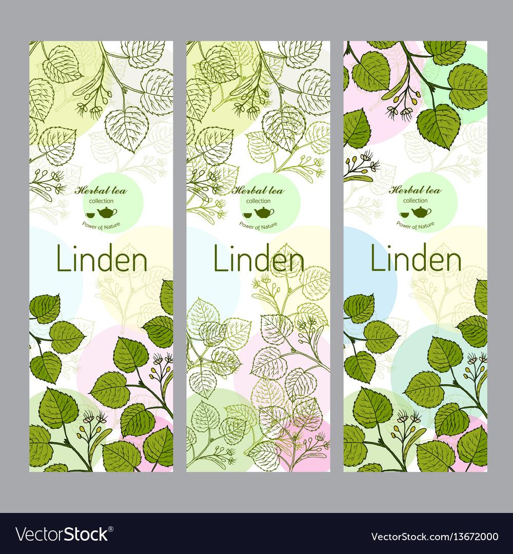 Herbal tea collection linden banner set