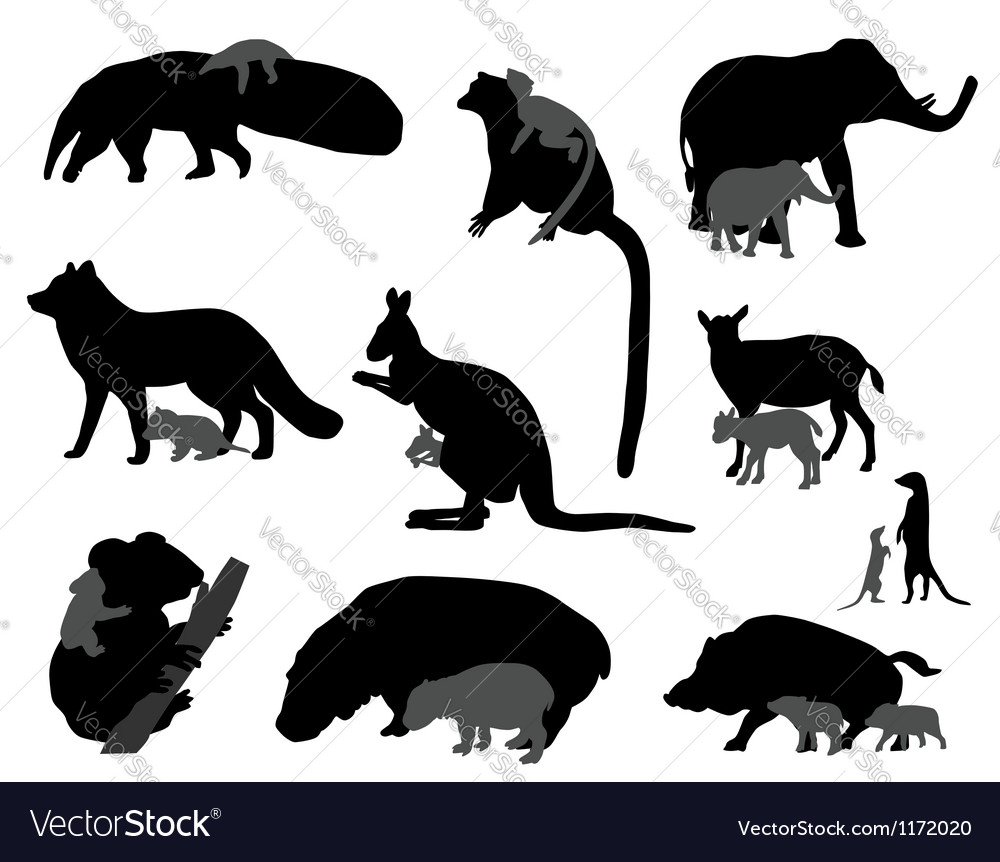 Animal kids vector image