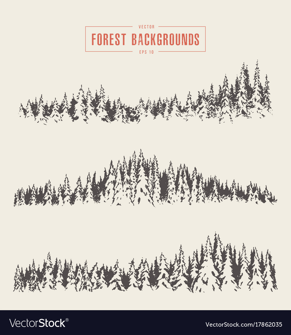 Set pine forest backgrounds drawn sketch
