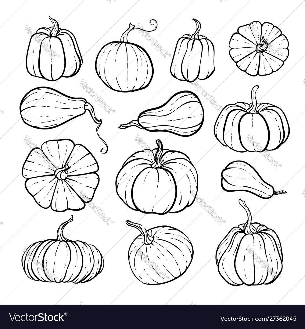 Set decorative black and white pumpkins hand