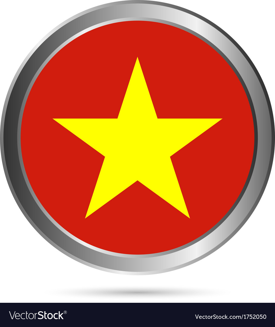 Vietnam flag button vector image