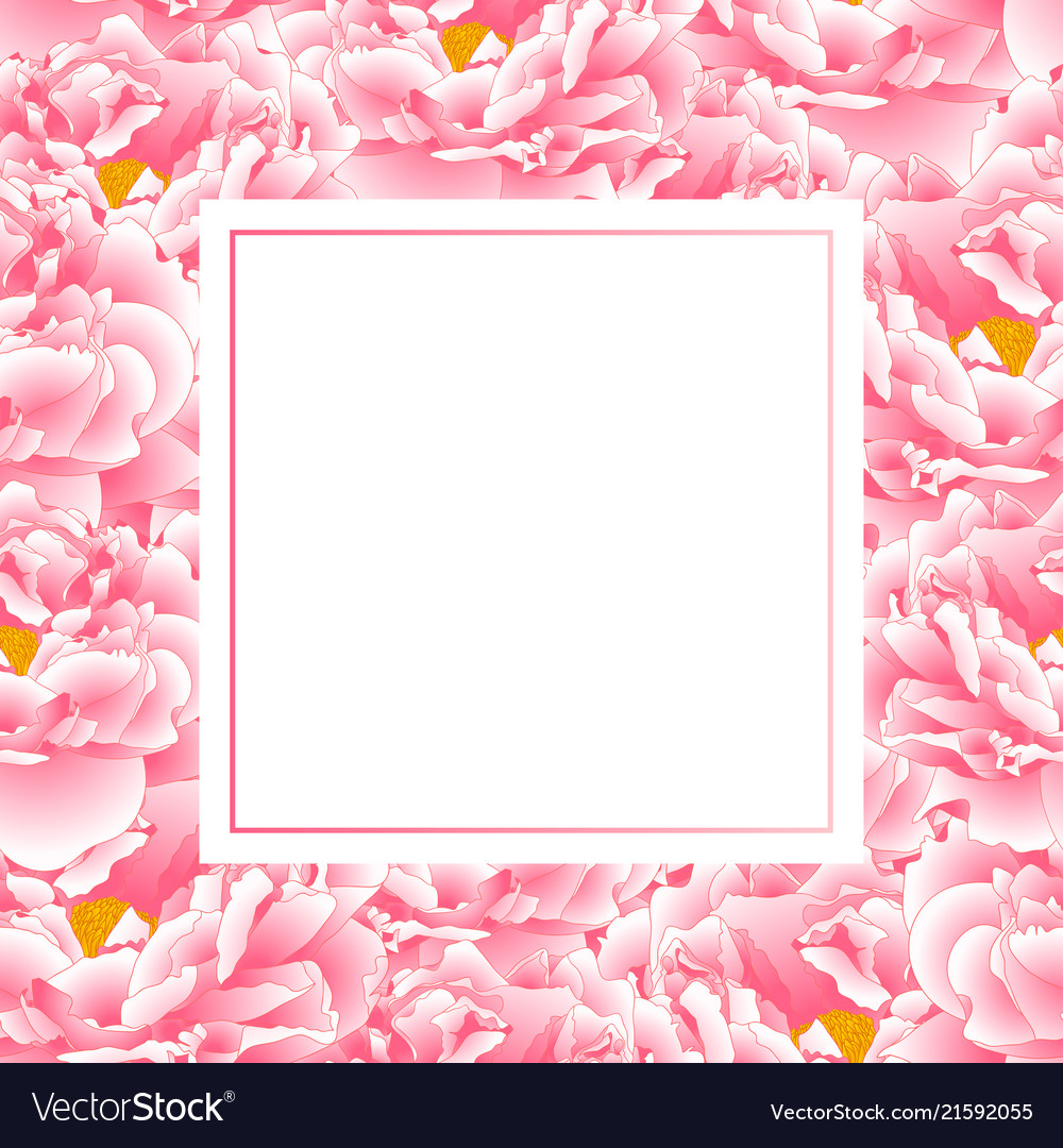 Pink peony banner card