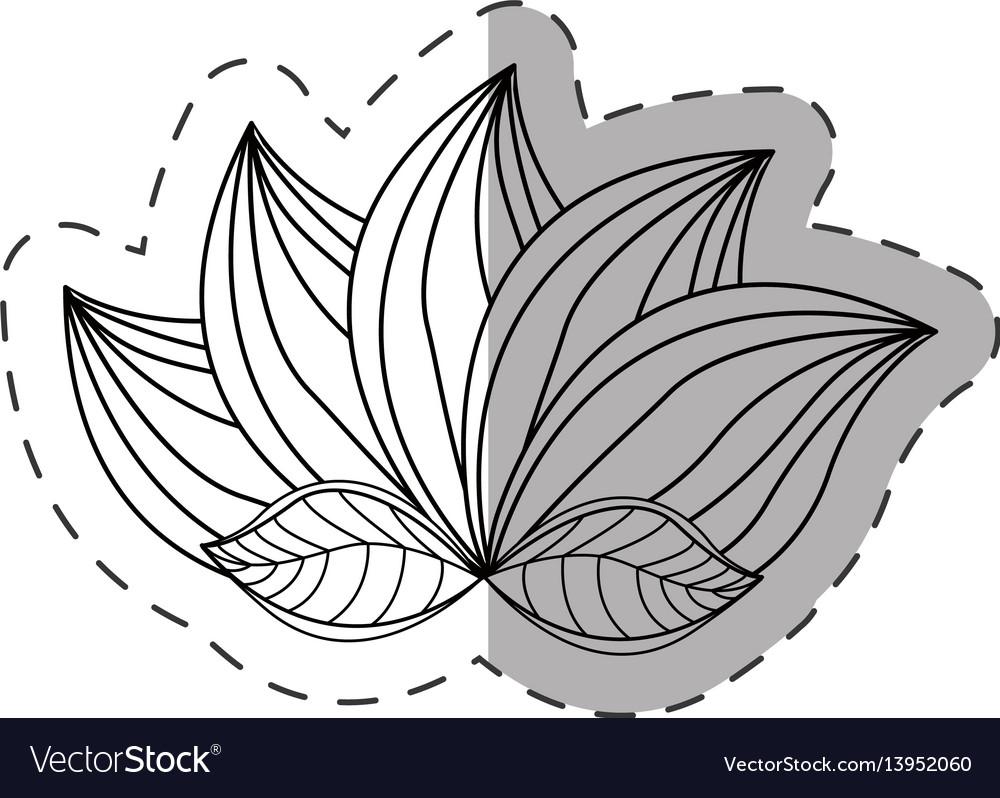 Lotus flower decoration monochrome vector image