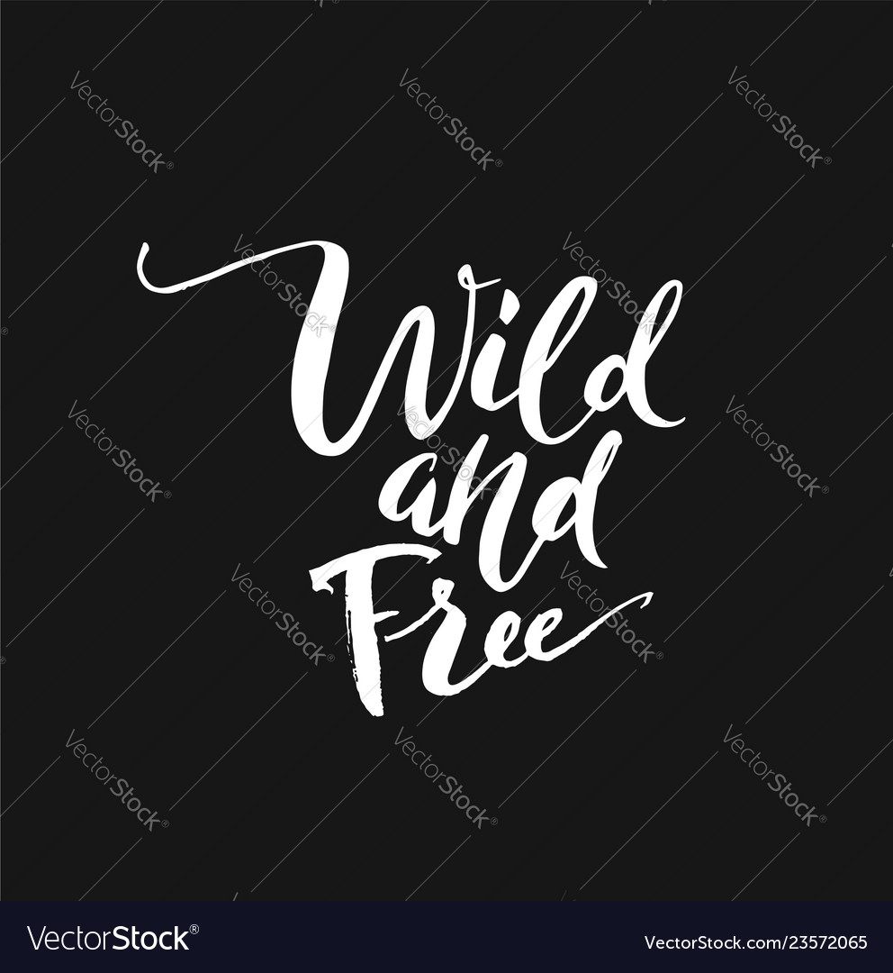 Wild and free hand brush lettering inspirational