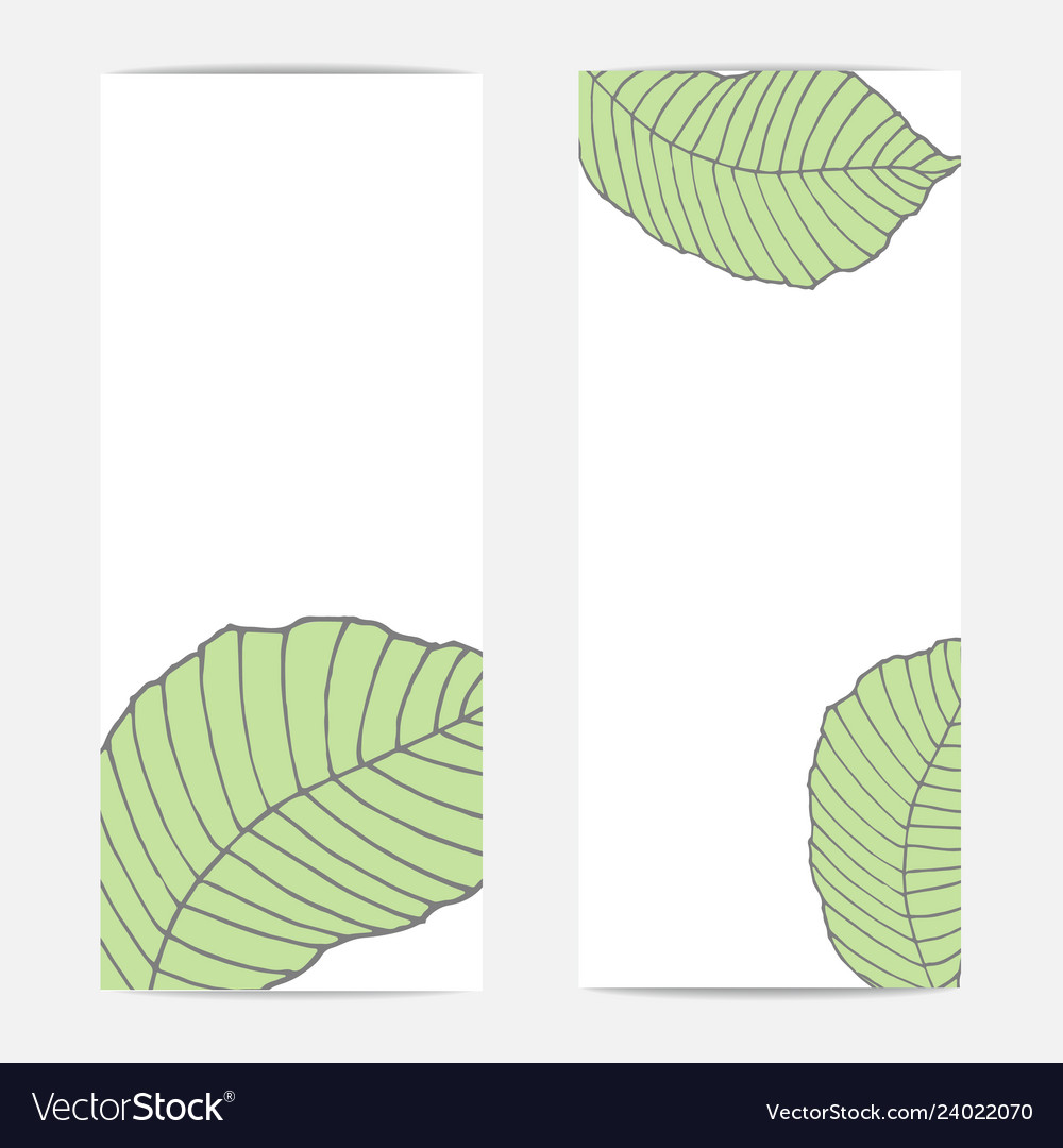 Banners with large tropical green natural leaves