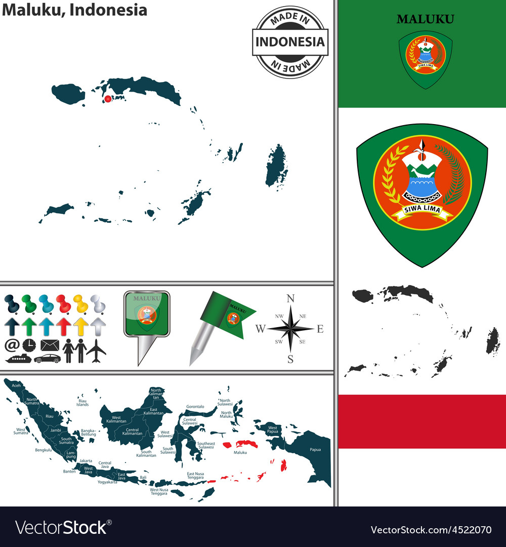 Map of Maluku vector image