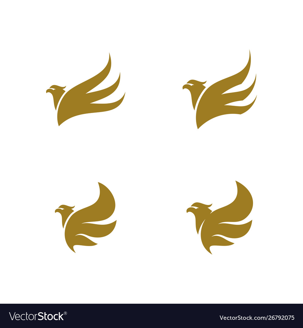Set eagle logo design sport eagle logo