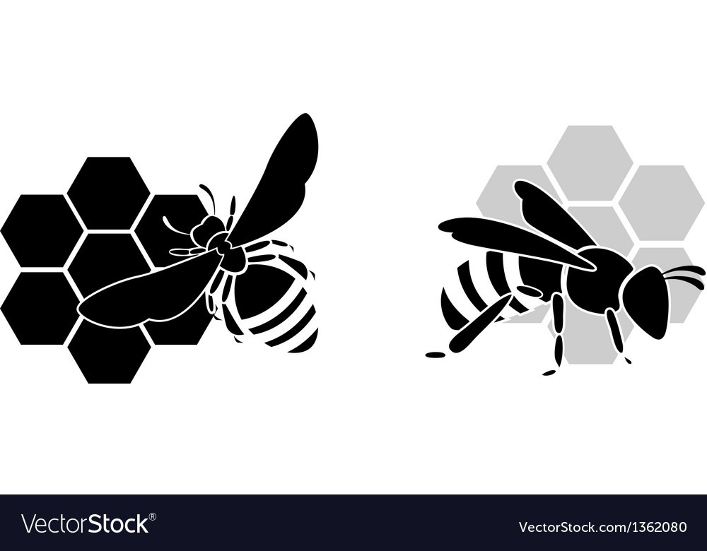 Black Bee Silhouette Isolated On White Background Vector Image Silhouette set of 4 bees in different angles. vectorstock