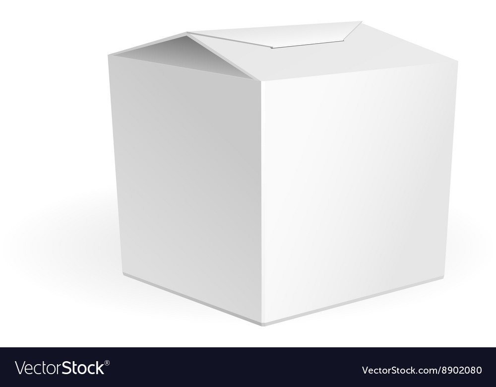 White Cardboard Fast Food Box Packaging For Lunch vector image