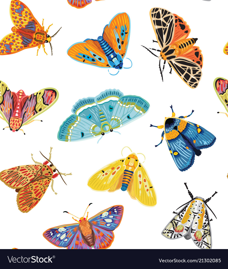 Cute butterflies seamless pattern colorful