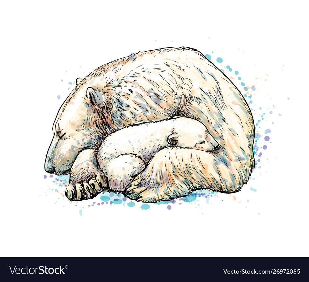 Polar bear with cub from a splash watercolor