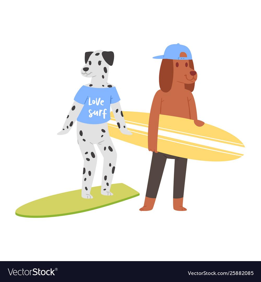 Surf cat dog animal surfer character