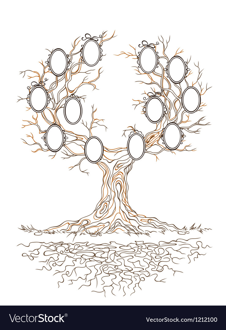 Graphic genealogical branchy tree