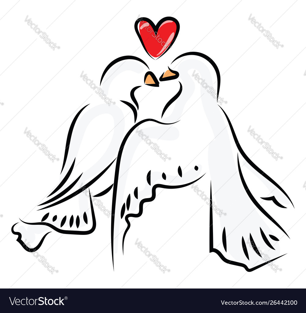 Love Birds On White Background Royalty Free Vector Image