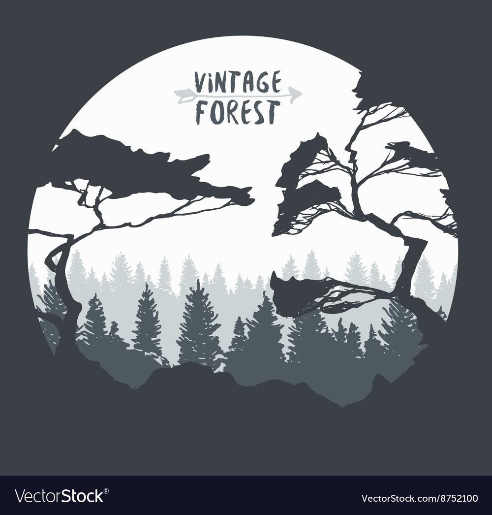 Pine forest hand drawn