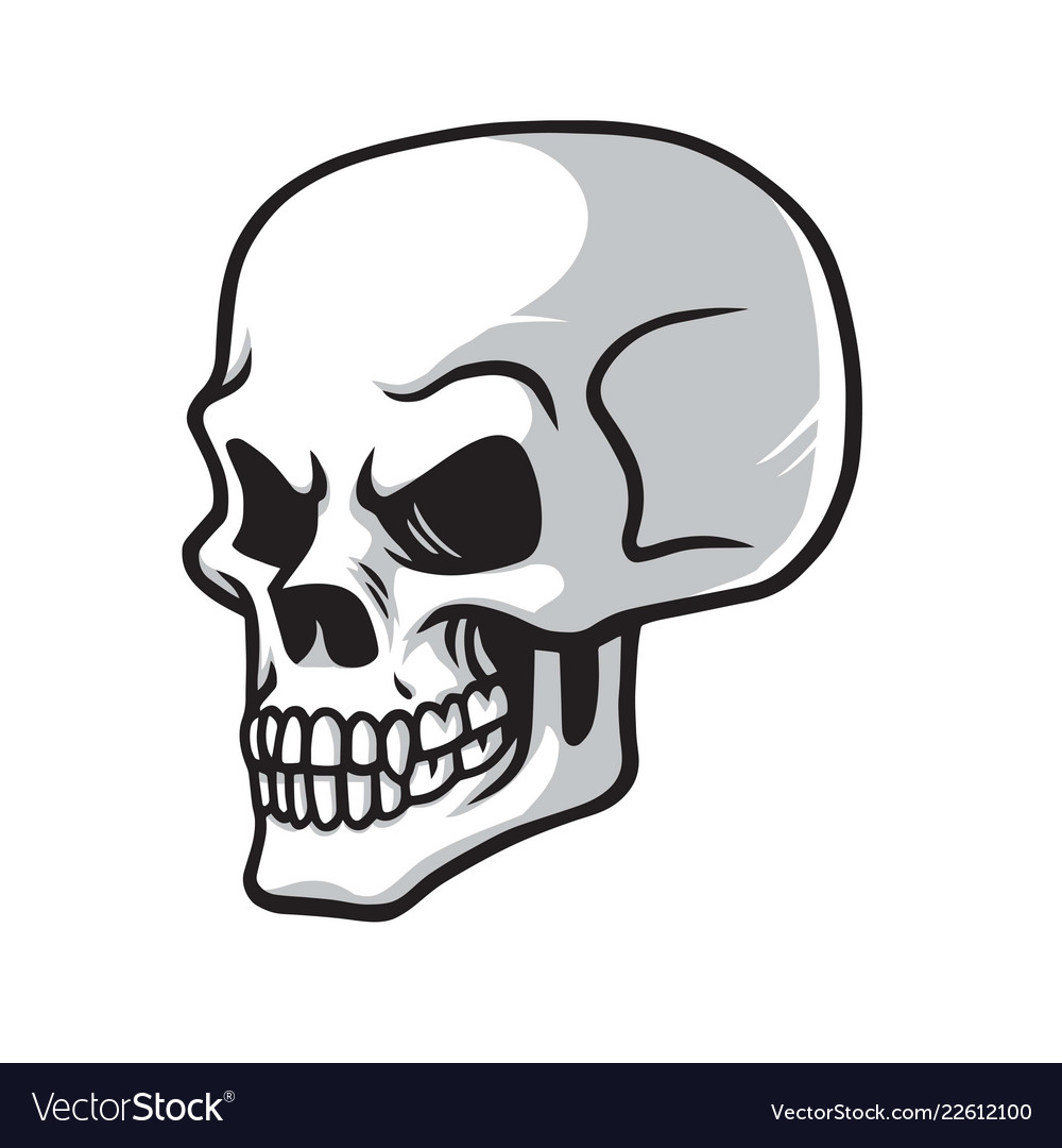 Skull cartoon drawing icon Royalty Free Vector Image