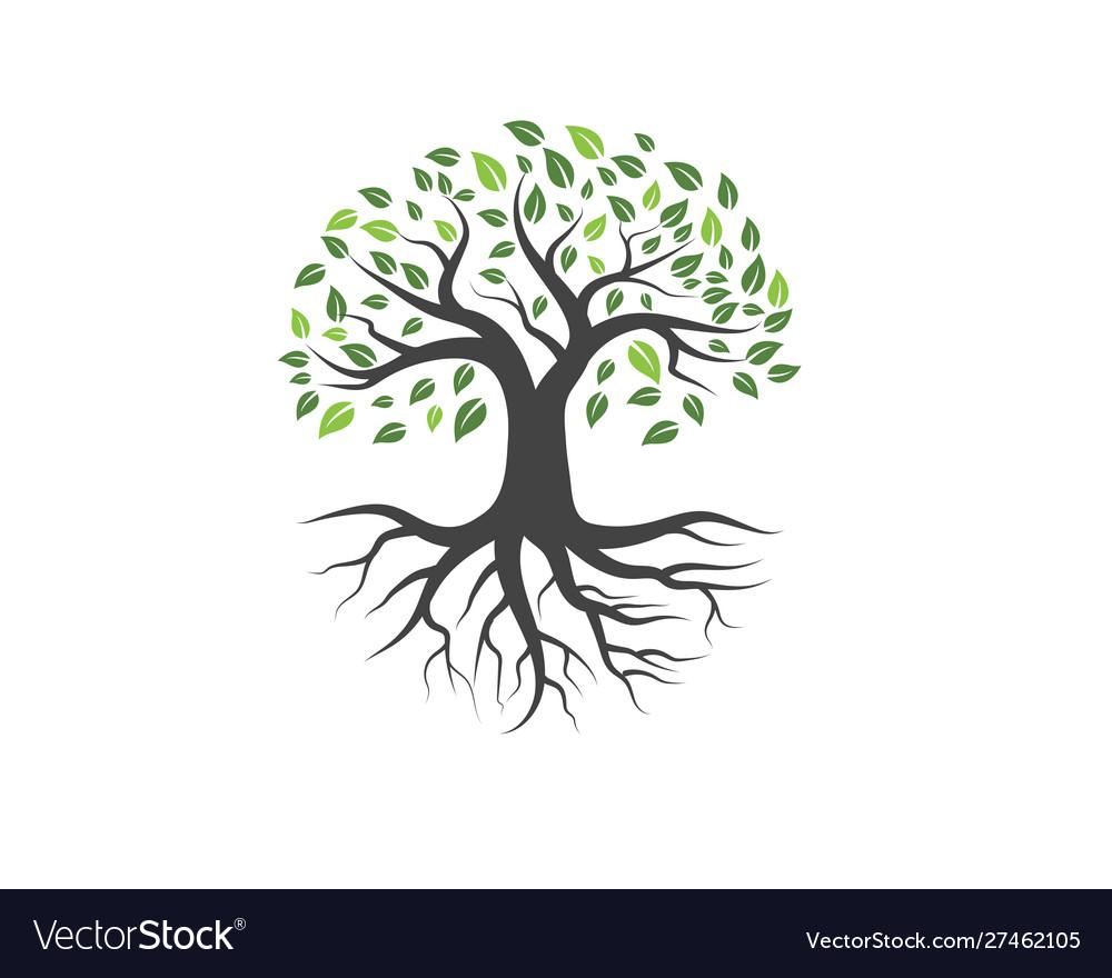 Logos green tree leaf