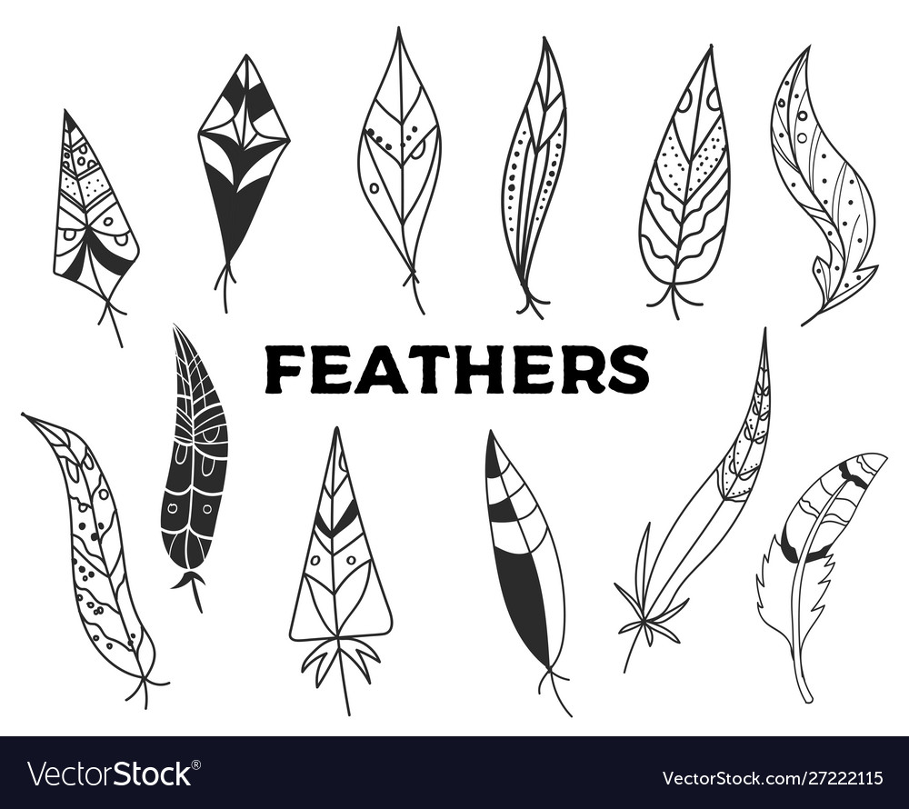 Set hand drawn feathers isolated on white