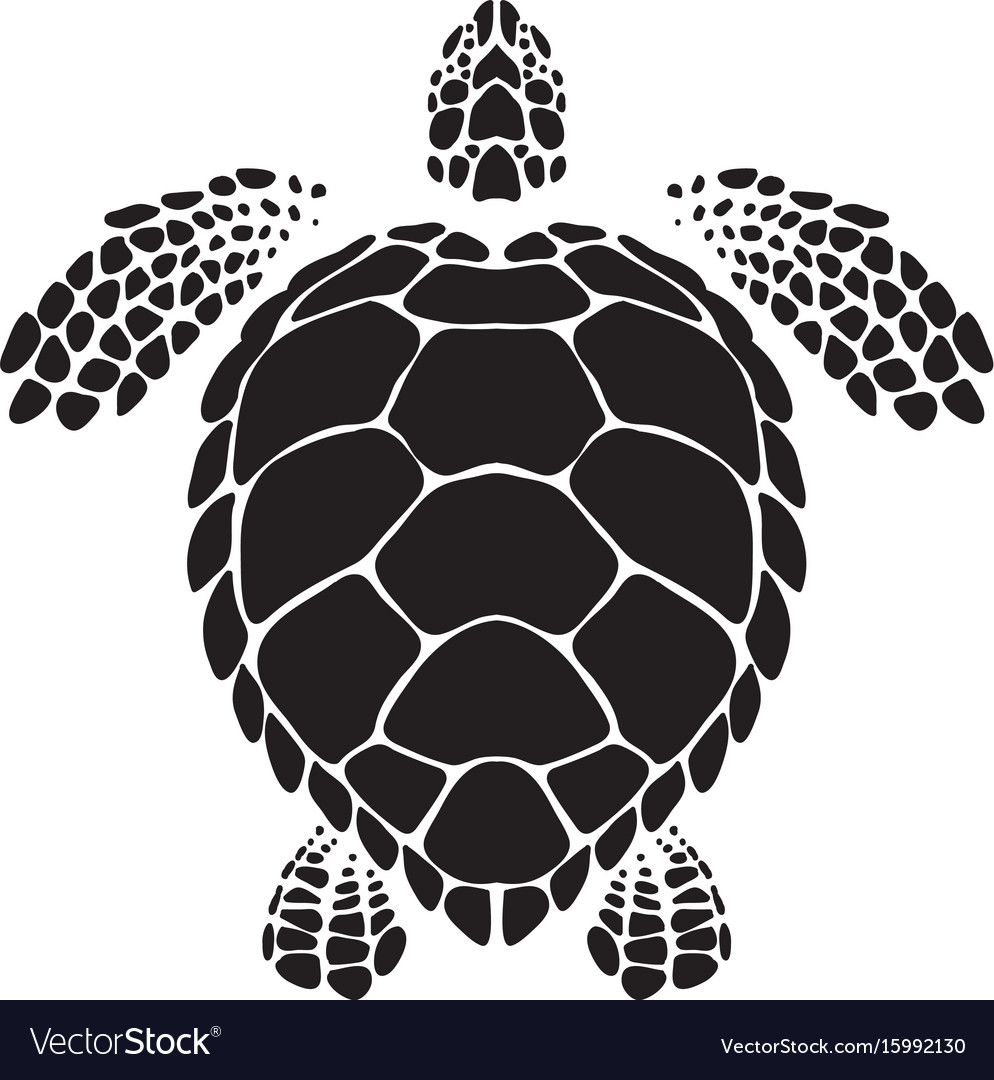 Graphic sea turtle vector image