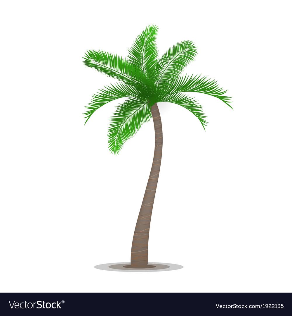 Tropical Palm Tree Symbol Royalty Free Vector Image