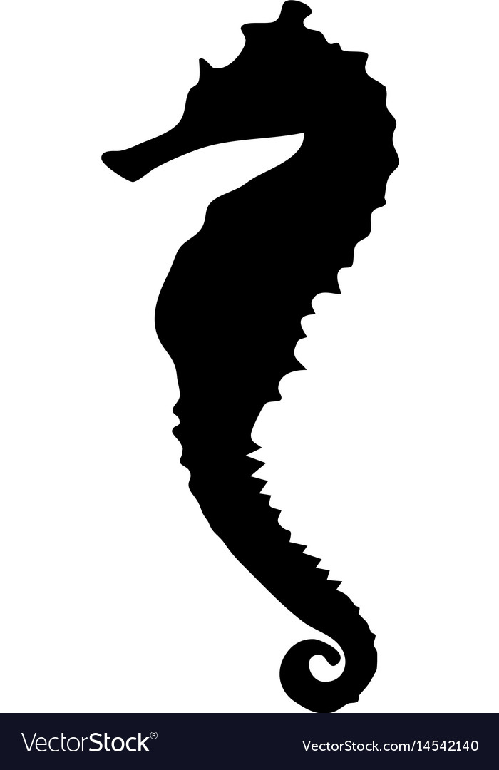 Black Silhouette Sea Horse Royalty Free Vector Image