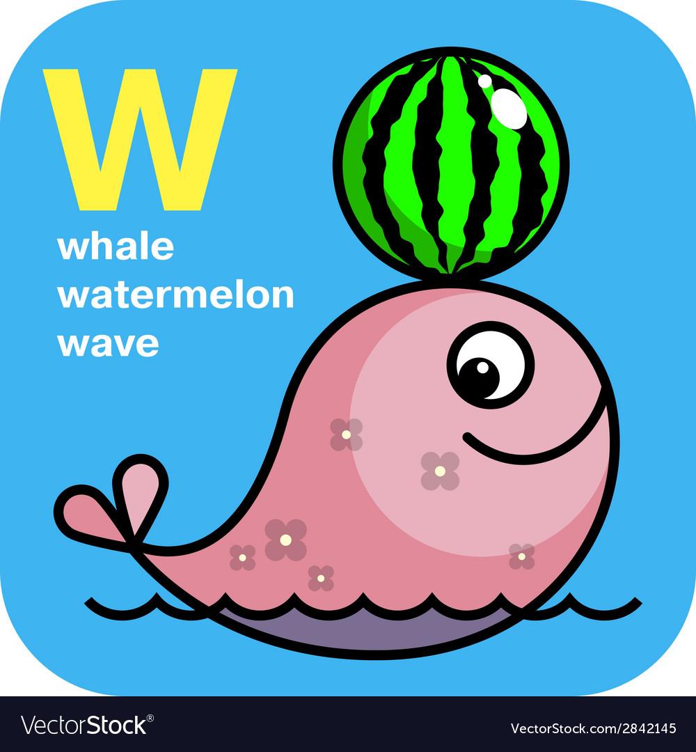 ABC whale watermelon wave
