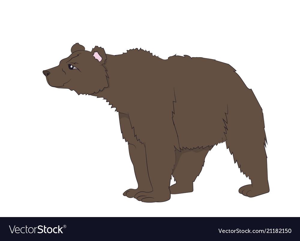 Bear stands