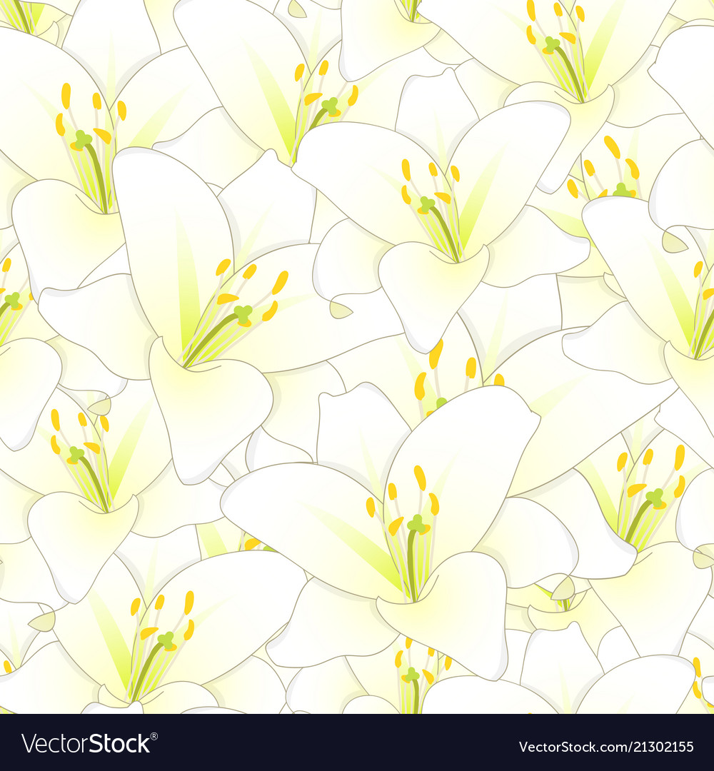 White lily flower seamless background royalty free vector white lily flower seamless background vector image izmirmasajfo