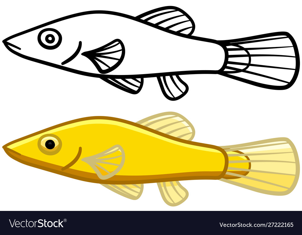 Chinese Algae Eater In Colored And Line Versions Vector Image