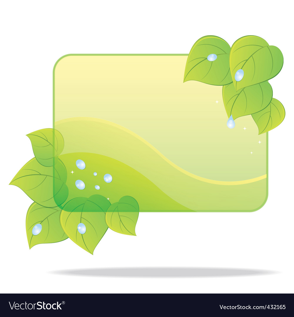 Eco card with green leaves vector image